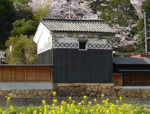 Kura Giappone rurale fra i fiori mostra le tracce della pittura nera usata per nasconderlo durante la seconda guerra mondiale