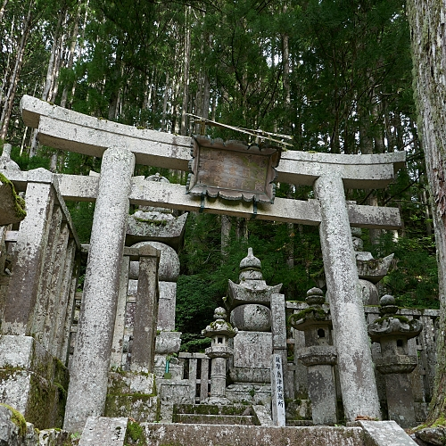 Torii, stupa e lanterne di pietra fra la foresta