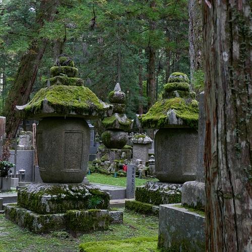 Tombe coperte da muschio al cimitero del tempio Okunoin