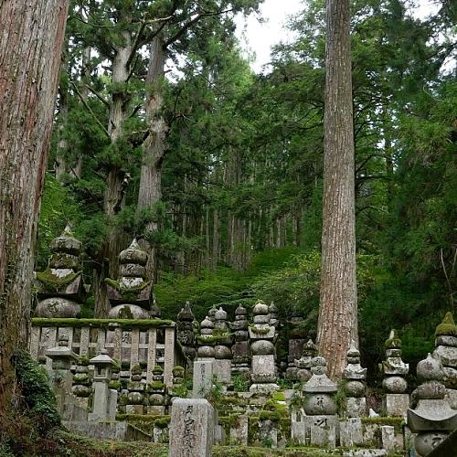 tombe e stupa in mezzo a una foresta di pini